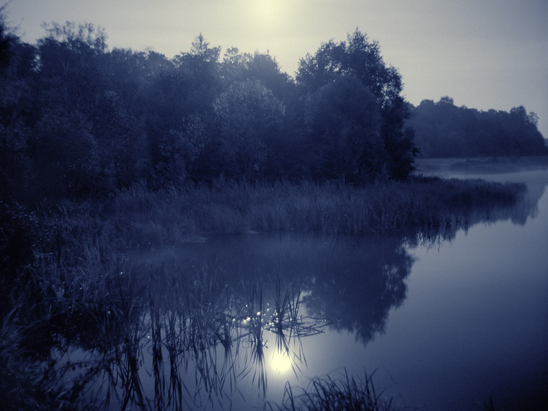 http://www.naturephoto.ru/Images/Moon-R-web.jpg